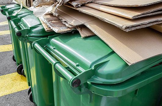 green-bins
